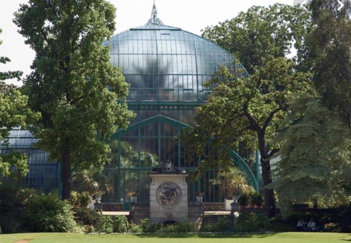 청녹색의 식물원.jpg